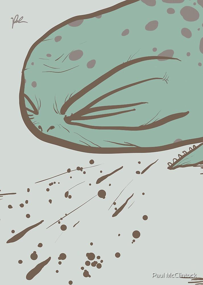 sick tortoise by Paul McClintock