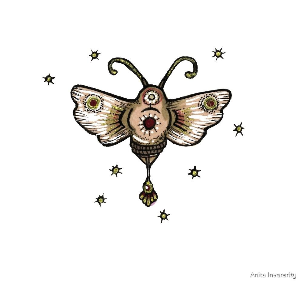 Moth by Anita Inverarity