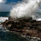 1187 Force of Nature by DavidsArt