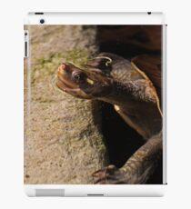 Turtle Bath-Time iPad Case/Skin