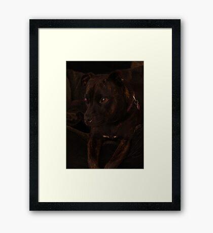 Millys Porträt Gerahmter Kunstdruck