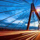 Anzac Bridge at night by David Haworth