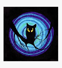 time for child stories: the EVIL OWL Photographic Print