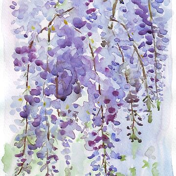 The Wisteria's scent by MareeClarkson
