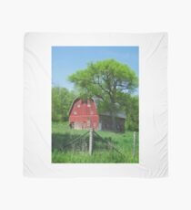 Barn in Springtime Scarf