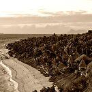 Tokoriki island by Froggie