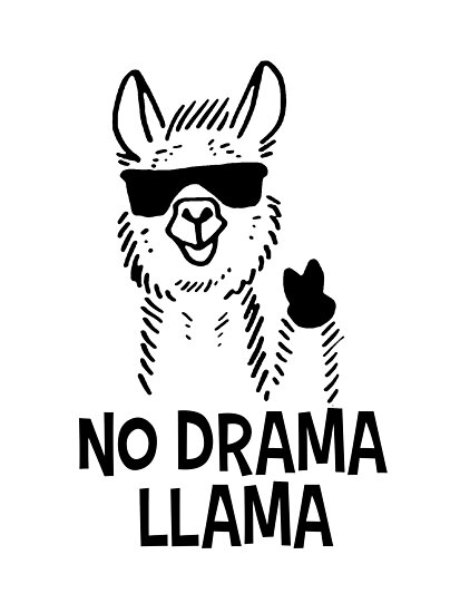 Image result for no drama llamas