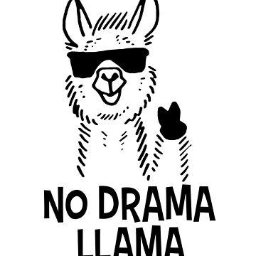 No Drama Llama by mrwrn2010