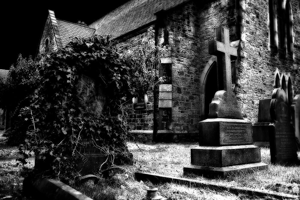 The Churchyard by David  MacCallum-Price