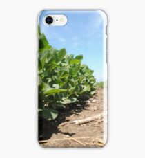 Soybeans iPhone Case/Skin