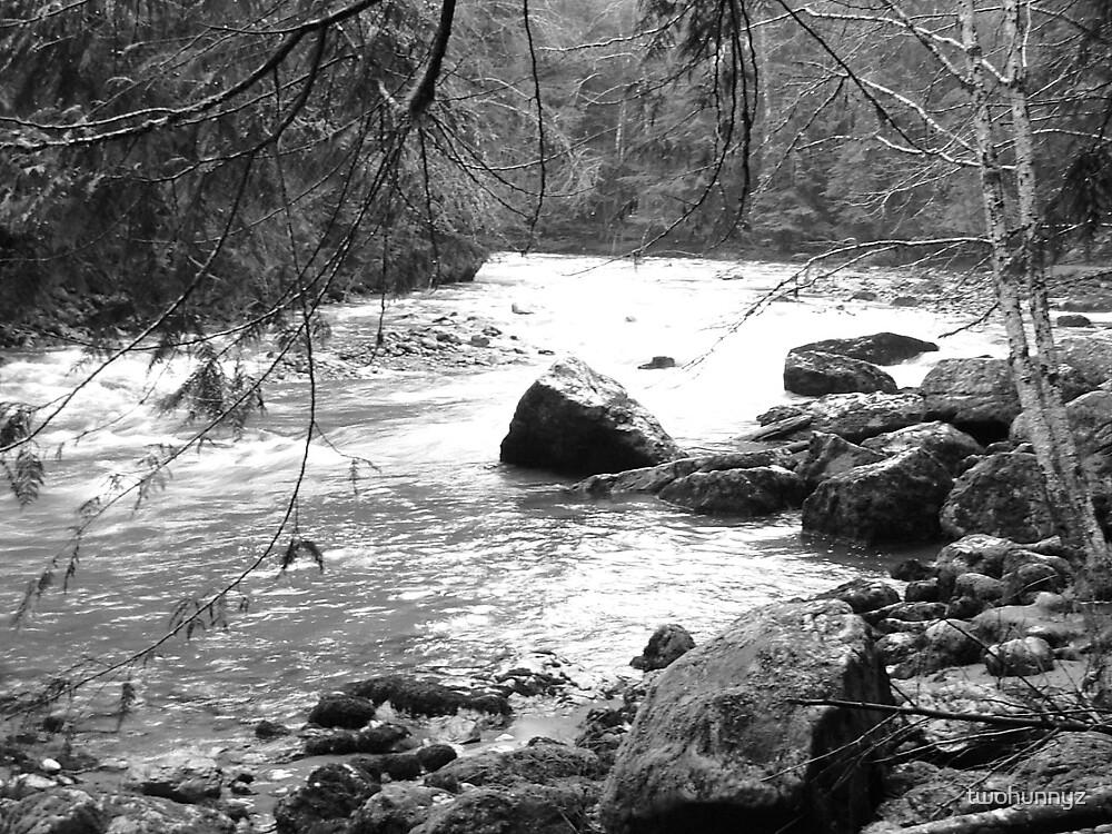 River- black & white by twohunnyz