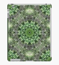Glass Web iPad Case/Skin