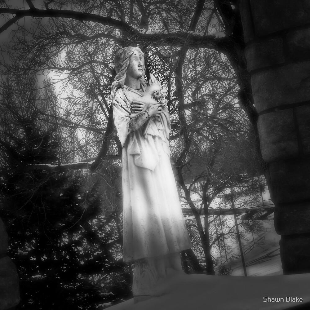 Frozen Saint by Shawn Blake