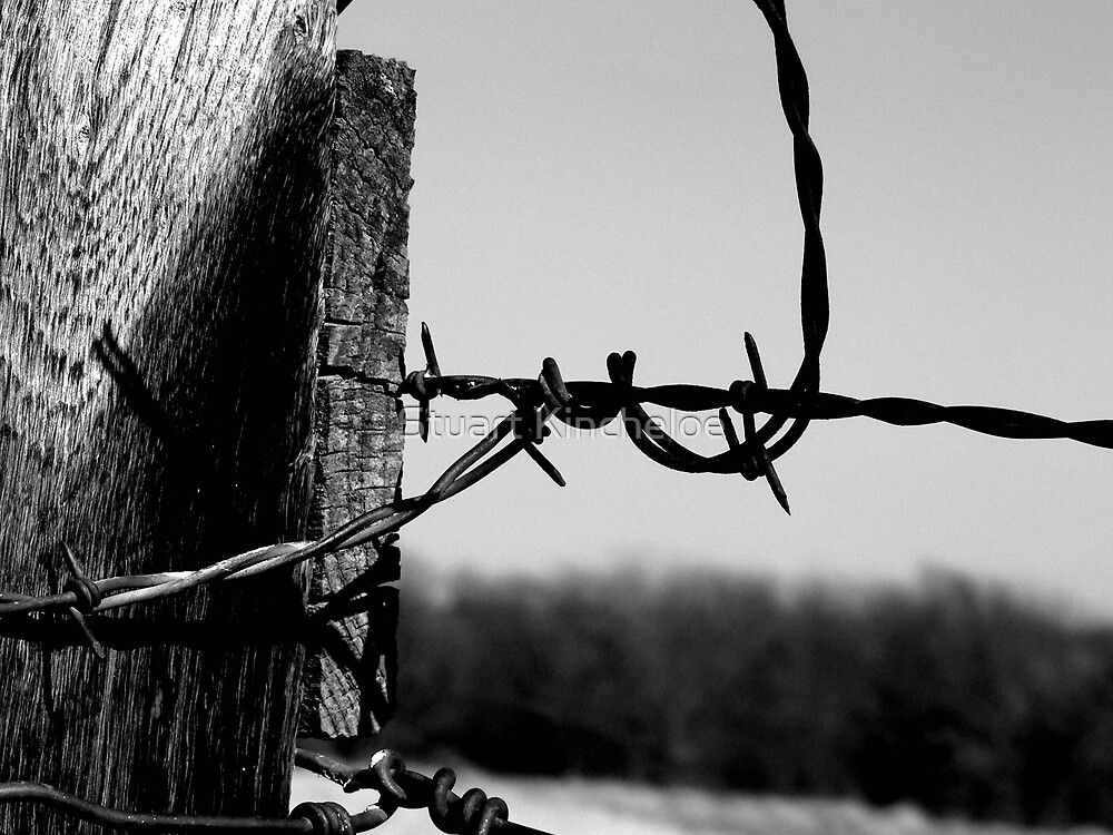 Barbed Fence Post by Stuart Kincheloe