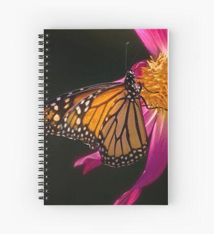 Monarch nippt an Dahliennektar Spiralblock
