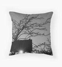 Thorny Sunset Throw Pillow