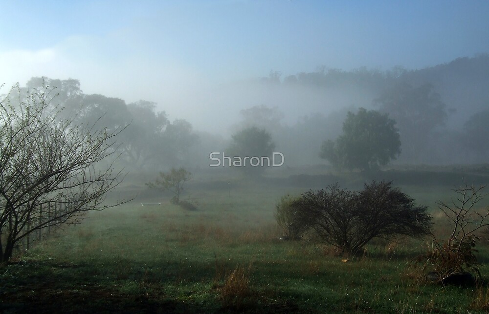 One foggy morn. by SharonD
