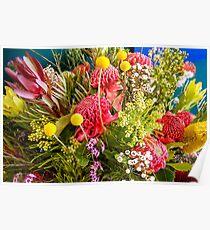 Amazing Australian native flowers Poster