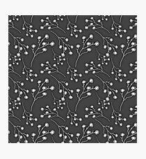 Baby's Breath Flower Pattern - Black Photographic Print