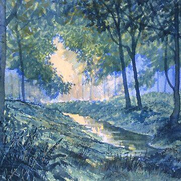 """Evening in Wykeham Forest"" by GlennMarshall"