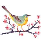 Yellow Wagtail - Gouache Yellow Wagtail perching on Cherry Blossom by Jezhawk
