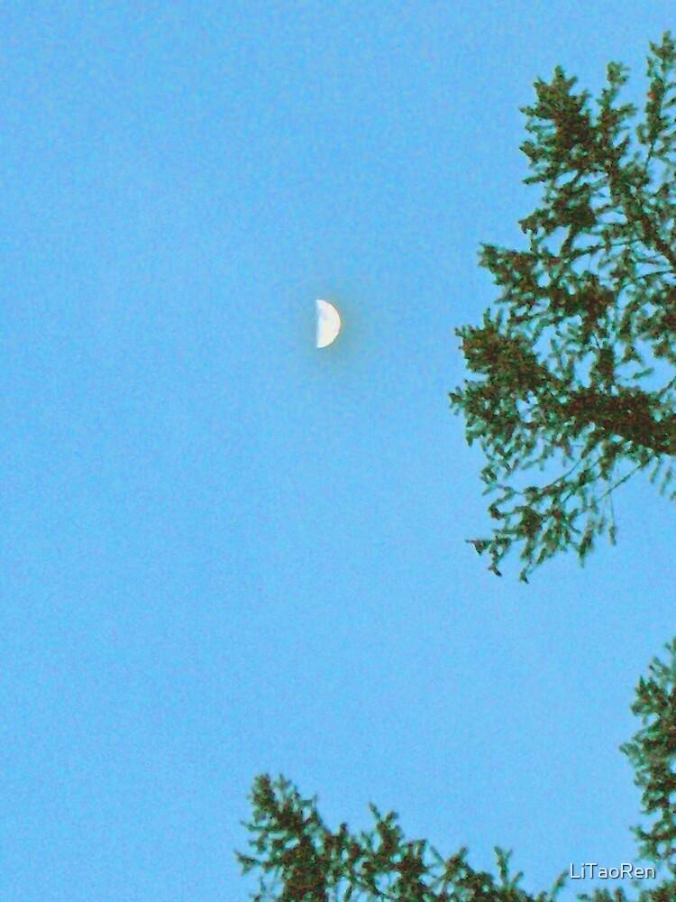 Day-Moon? by LiTaoRen