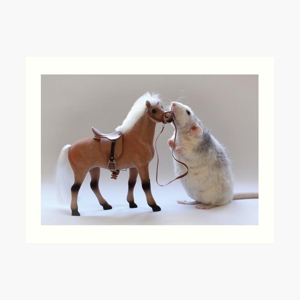 Ich liebe Pferde! Kunstdruck