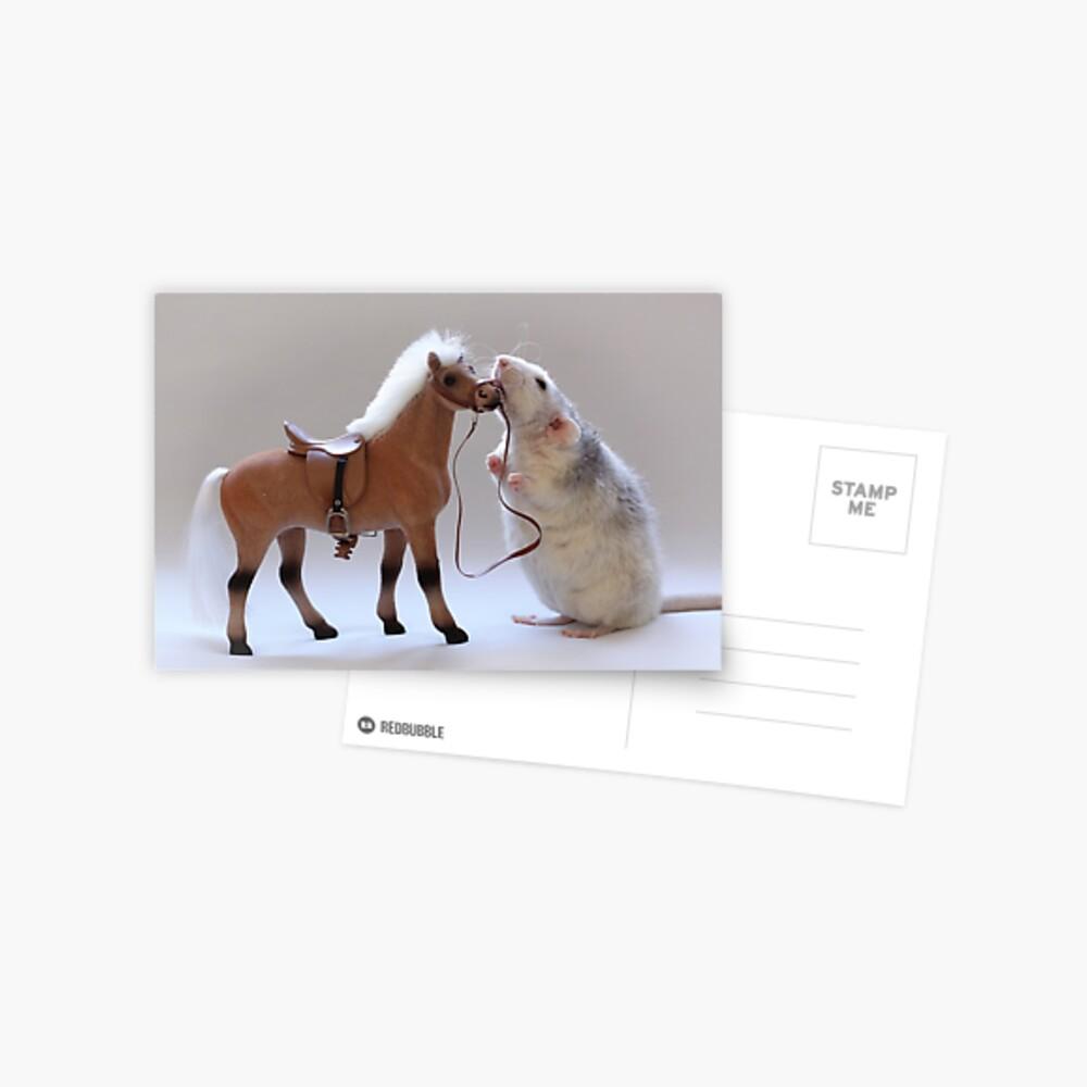 Ich liebe Pferde! Postkarte