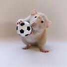 I love to play! by Ellen van Deelen