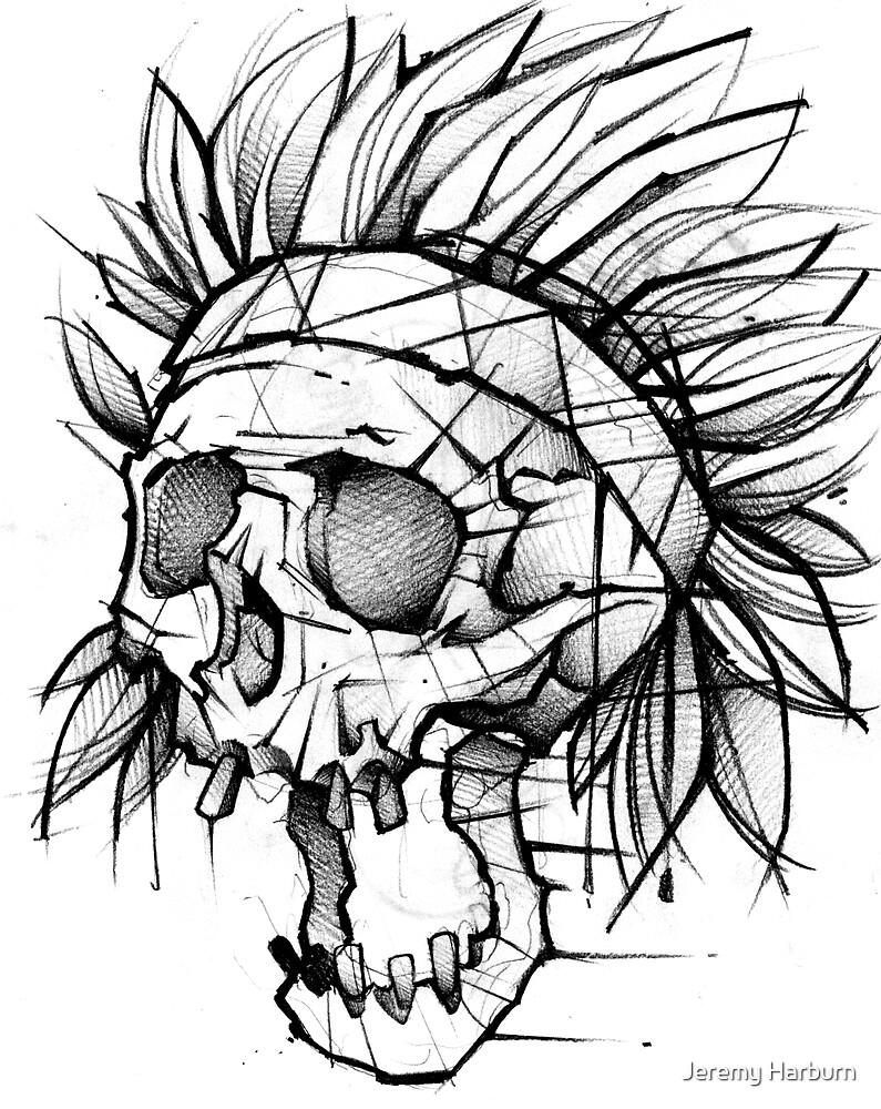 Native Skull by Jeremy Harburn