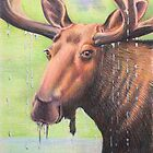 Moose by WyoClements