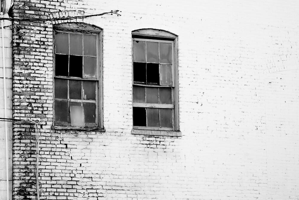 Windows & Brick by Rod  Adams