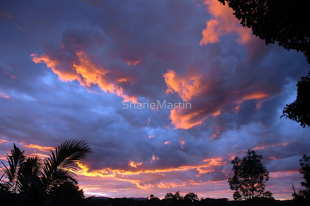 Out my back door by ShaneMartin