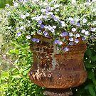 Classical Garden by Fay  Hughes