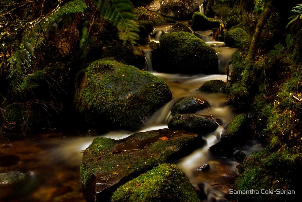 Cascades by Samantha Cole-Surjan