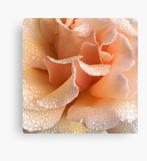 Rose Petal Bliss Canvas Print