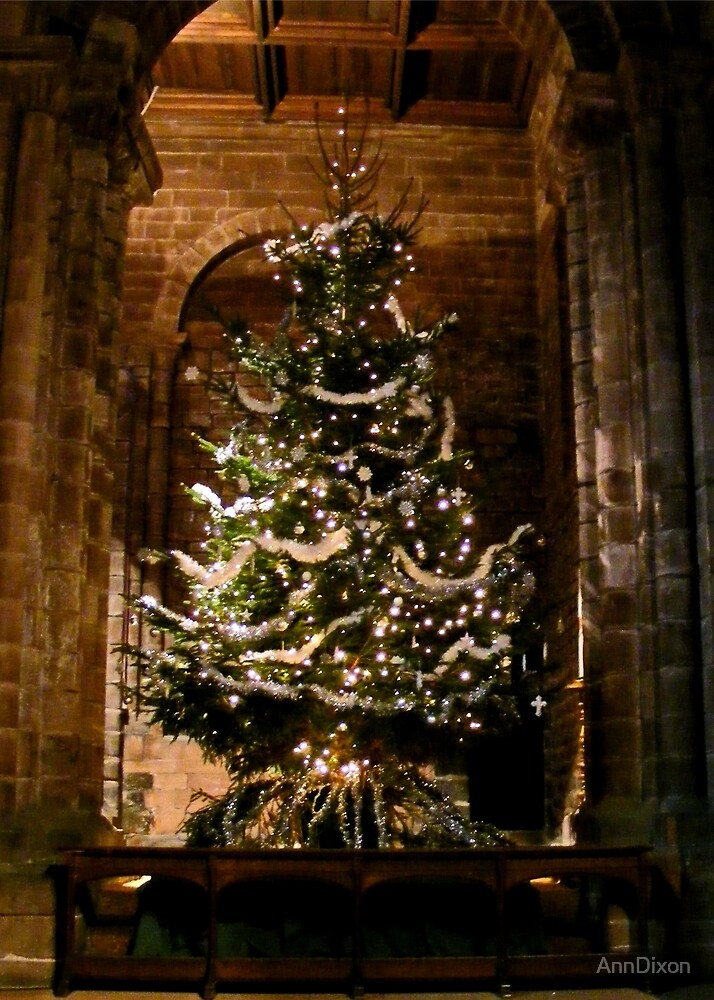 Chester Cathedral at Christmas by AnnDixon