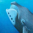 Bowhead Whale by WyoClements