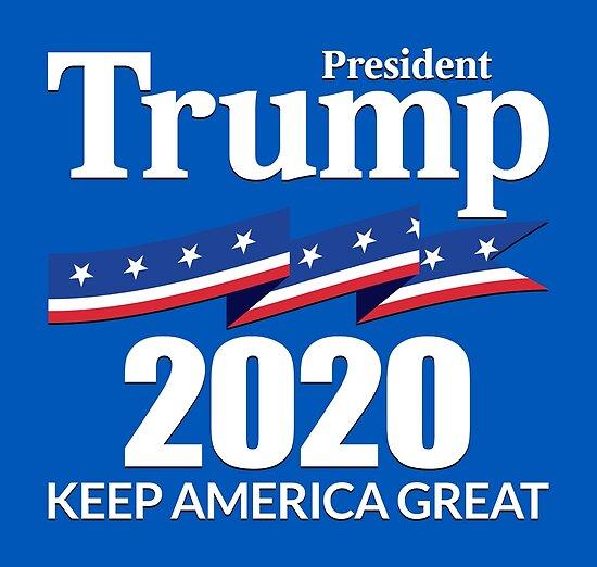 Resultado de imagen para trump presidente 2020