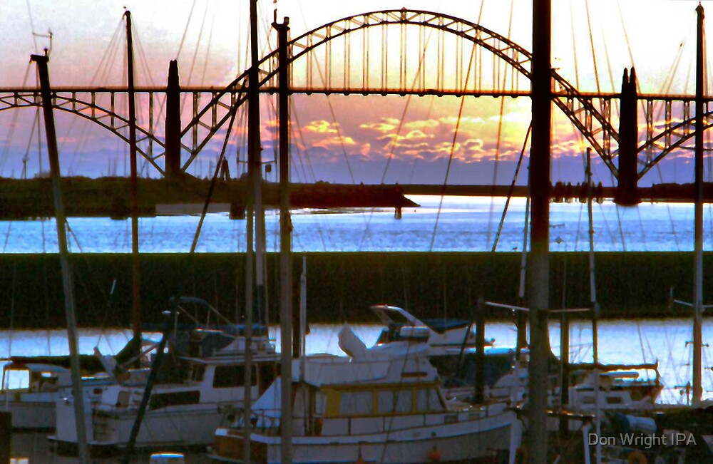 Newport Harbor by Don Wright IPA