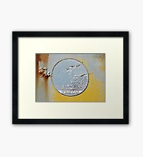You Can't Hide the Truth  Framed Print