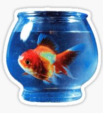 Big Fish Theory - Vince Staples Sticker