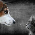 Oobie & the Dog by Ladymoose