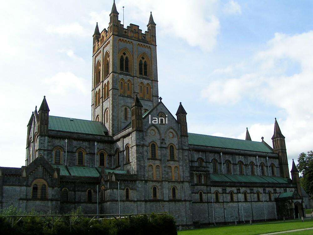 Devonshire Abbey  by Iani