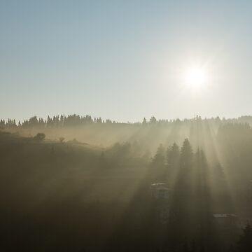 Morning Mist Sunrays by GeorgiaM
