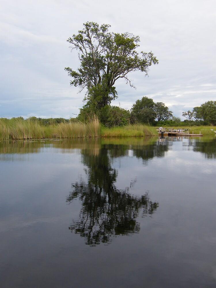 Botswana, 2008 by DocMJ
