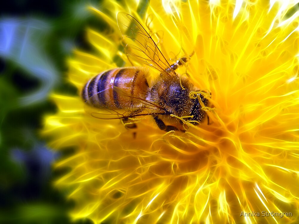 Bee on fractal Dandelion by Annika Strömgren