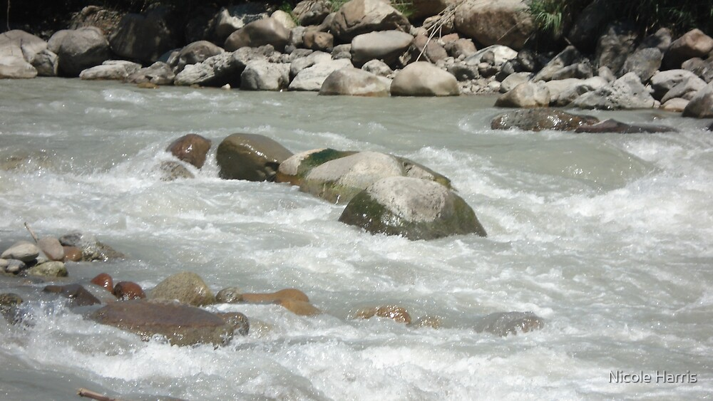 River rocks by Nicole Harris