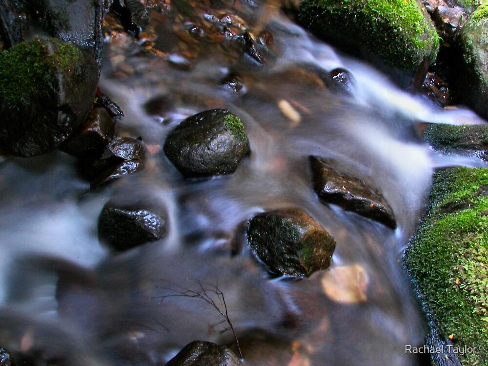Downstream by Rachael Taylor