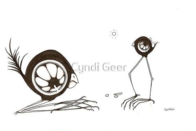 Birds by Cyndi Geer